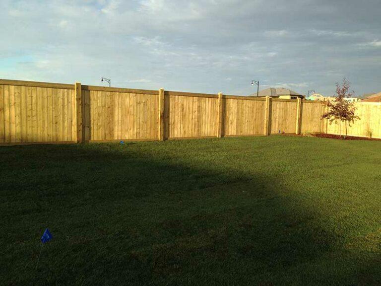 Fences-15