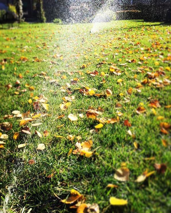 Irrigation_System_7